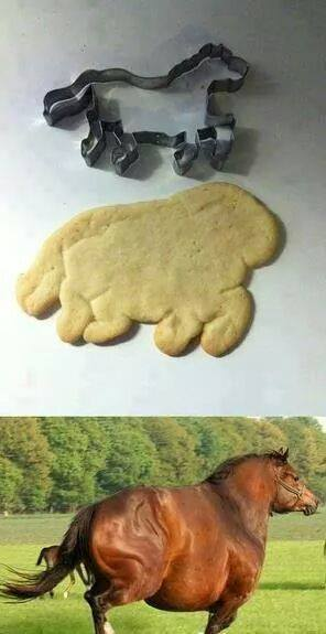 horse nailed it